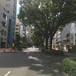 お店前の並木道